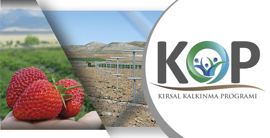 KOP Bölgesi'nde İlçe Bazlı Kırsal Kalkınma Programı Uygulanıyor