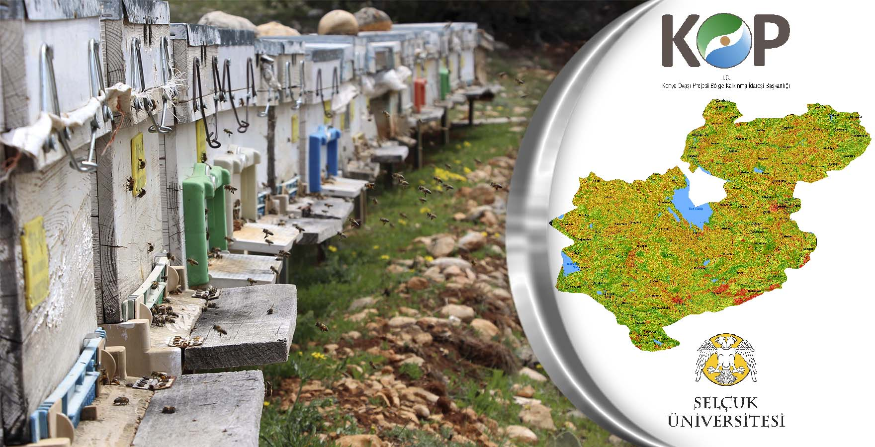 Dünyanın En Geniş Kapsamlı Arıcılık Geo-Portalı KOP Bölgesinde Üretildi.