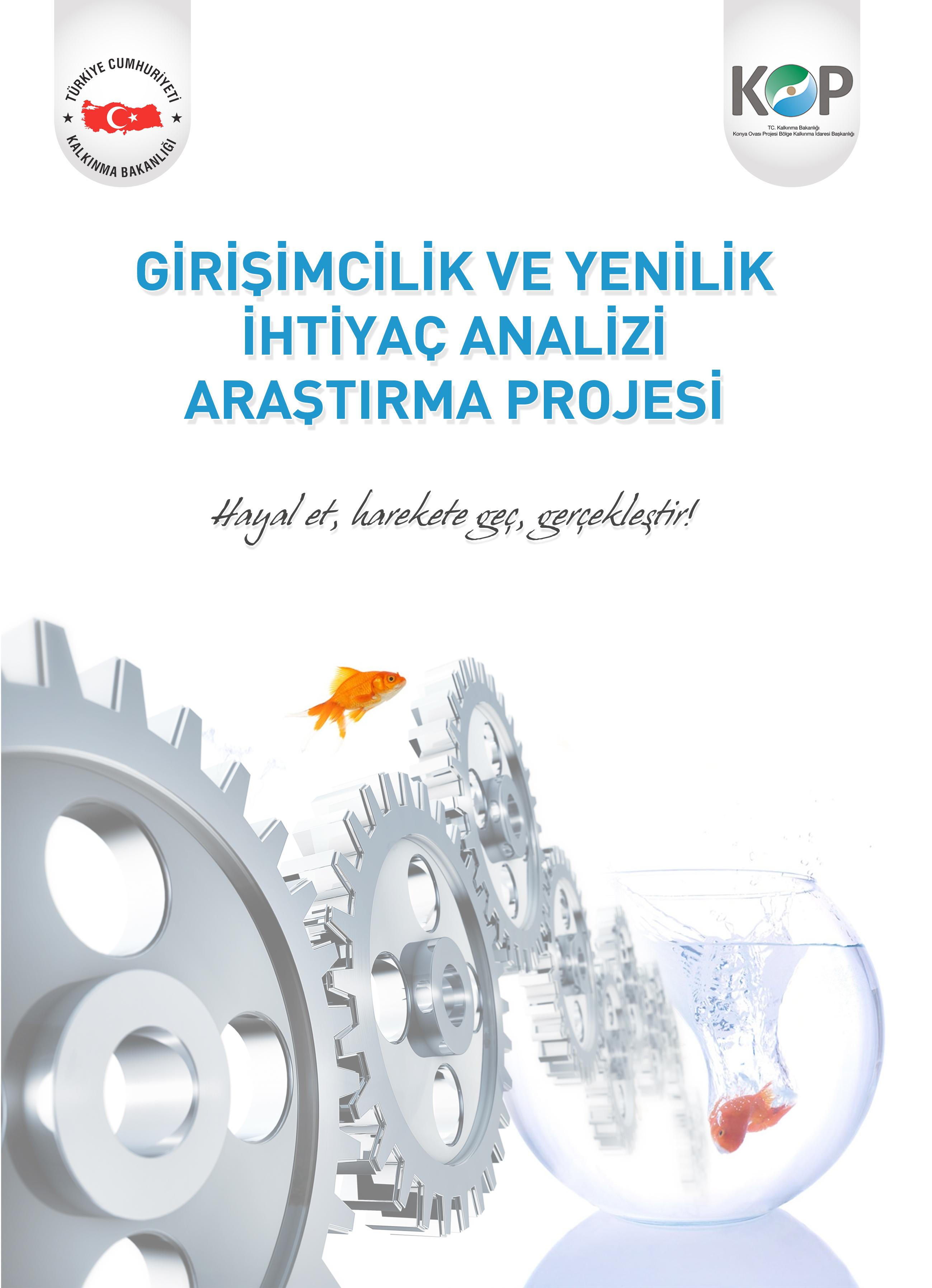 Girişimcilik ve Yenilik İhtiyaç Analizi Projesi